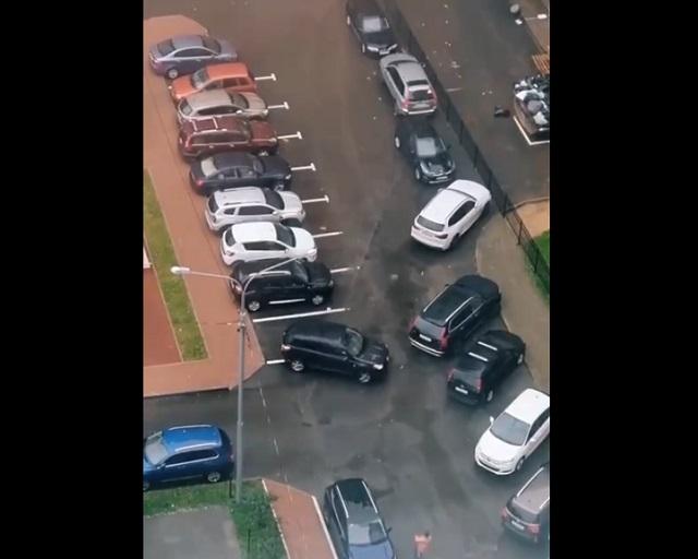 автоледи паркуется