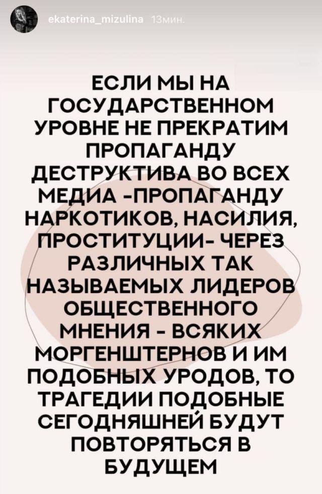 сторис Екатерины Мизулиной