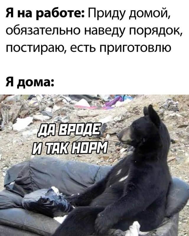 Подборка картинок. Вечерний выпуск (30 фото) - 06.10.2021