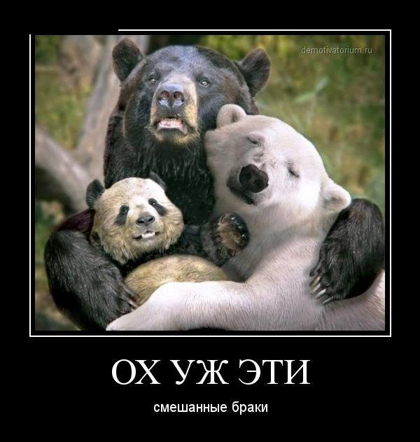 """Л,Н, Толстой """"3 медведя"""""""