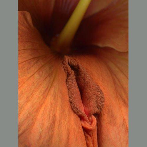 domashnee-foto-tetki-porno