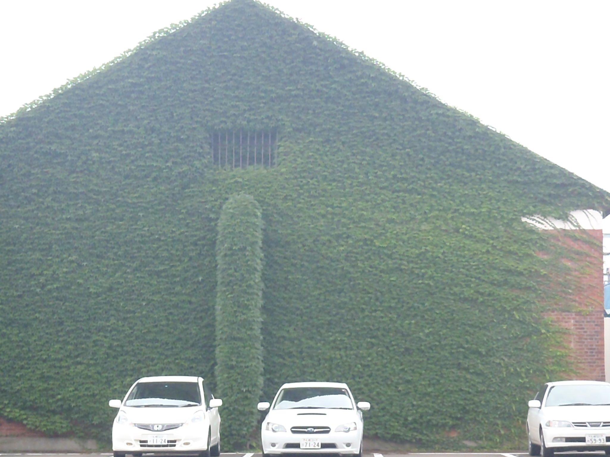Дом в центре Саппоро