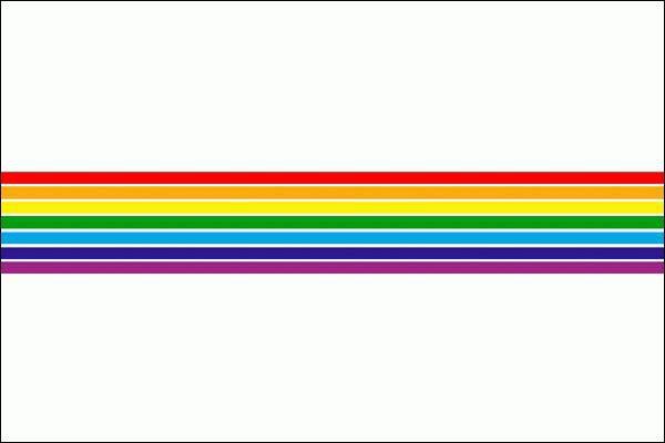 Флаг Еврейской автономной области…