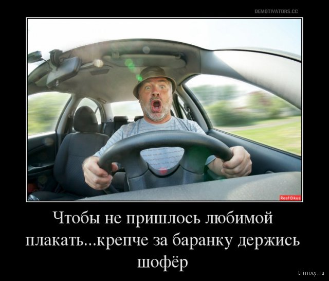 Крепче за баранку держись шофер прикольные картинки, картинки