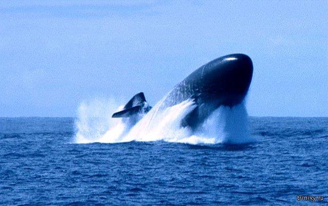 Картинки по запросу атомная подводная лодка всплытие