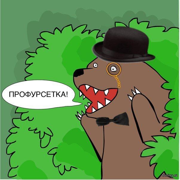 этом медведь из кустов кричит картинка говорится сайте нтв